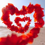 Valentine's Day Special 1